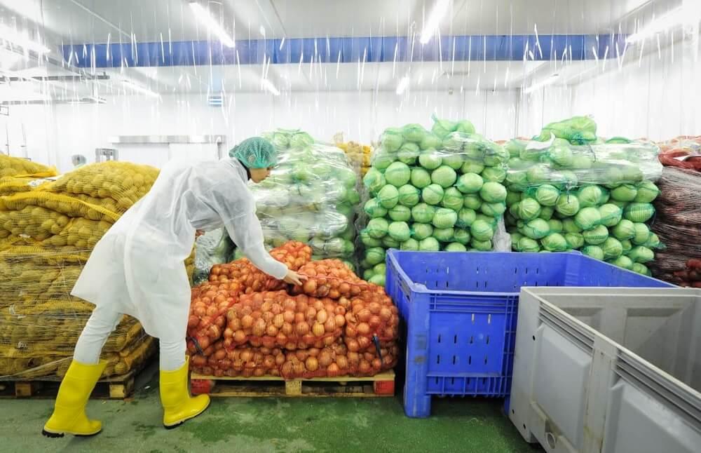 человек в хранилище овощей