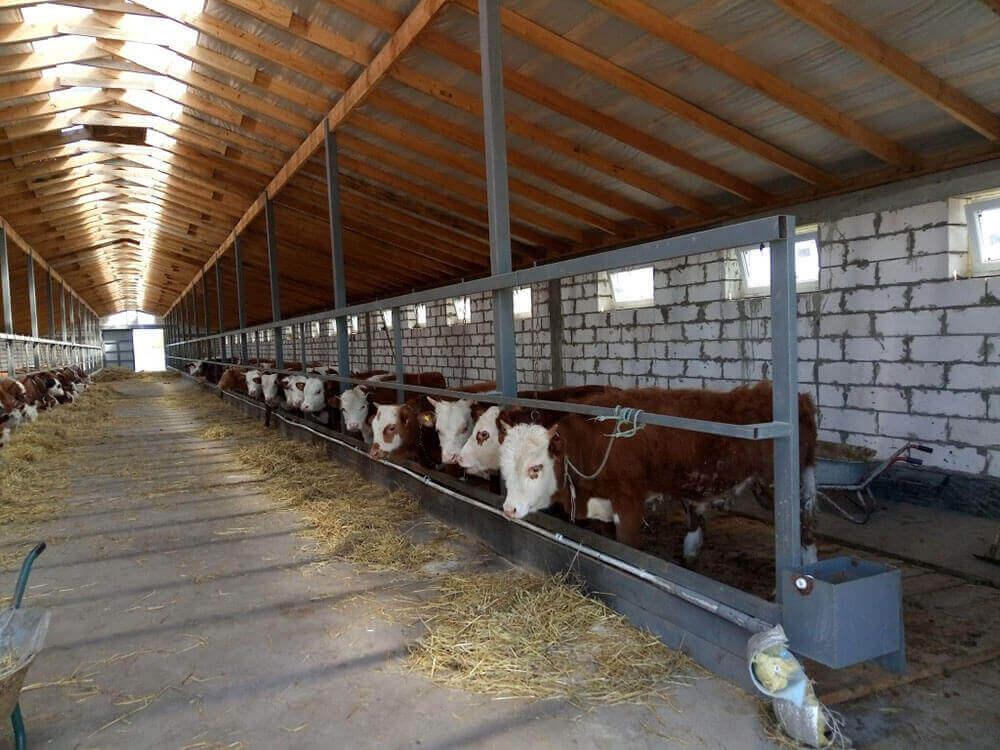 Помещение под мини-ферму